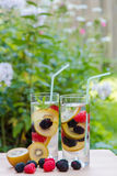 Infused water with  berries and golden kiwi. Stock Photos