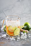 Infused water with citrus fruits Stock Images