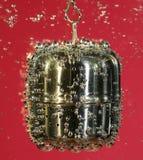 Infuser del té en agua Foto de archivo libre de regalías