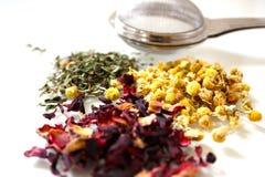 Infuser z rozsypiskami ziołowa herbata Zdjęcia Stock