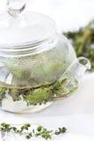 Infusión de hierbas con la menta y el tomillo imágenes de archivo libres de regalías