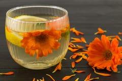 Infusión de hierbas de la flor de la maravilla con las rebanadas del limón Foto de archivo