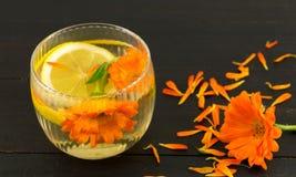 Infusión de hierbas de la flor de la maravilla con las rebanadas del limón Fotos de archivo libres de regalías