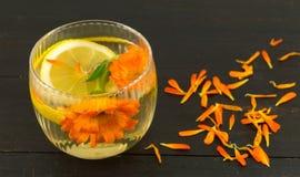 Infusión de hierbas de la flor de la maravilla con las rebanadas del limón Imagen de archivo libre de regalías