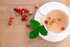 Infusión de hierbas deliciosa y sana de bayas y de hojas de fresas salvajes Una taza de té con las bayas del bosque Foto de archivo