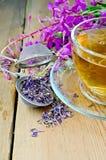 Infusión de hierbas en la taza de laurel de San Antonio con un tamiz Foto de archivo libre de regalías