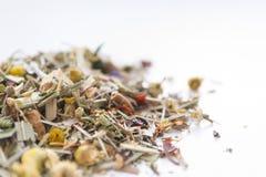 Infusión de hierbas secada en el fondo blanco Foto del primer Fotos de archivo libres de regalías