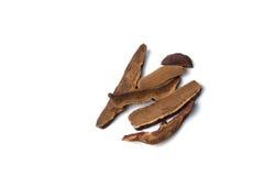 Infusión herbaria de la seta roja del reishi en aislado Imágenes de archivo libres de regalías