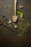 Infusión herbaria de la tisana Foto de archivo libre de regalías