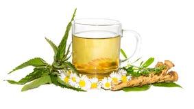 Infusión herbaria fresca para la curación de desintoxicación Fotografía de archivo