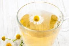 Infusion de chamomilla de Matricaria de camomille Photos libres de droits