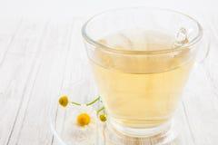 Infusion de chamomilla de Matricaria de camomille Images stock