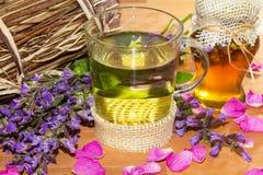 Infusion de fines herbes avec du miel Image stock