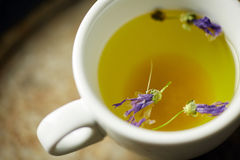 Infusion de fines herbes de tisane Photo libre de droits
