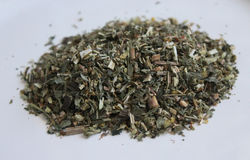 Infusion of herbs Stock Images