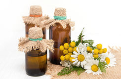 The infusion of medicinal herbs Royalty Free Stock Photography