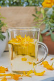 The infusion of the petals Tagetes Stock Photo