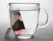 Infusione del tè di erbe Immagini Stock