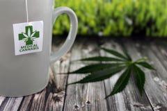 Infusione della cannabis in tazza ceramica fotografia stock libera da diritti