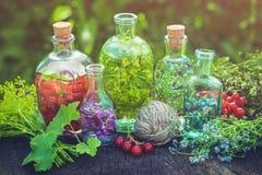 Infusione di erbe, tintura sana ed erbe curative Fotografie Stock Libere da Diritti