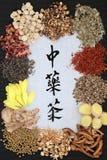 Infusiones de hierbas chinas Fotos de archivo libres de regalías