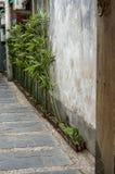 Ingång med bambugarneringar Arkivfoto