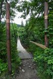 Ingång till den gamla upphängningbron över floden i skogen arkivfoto