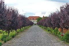 Ingång till den Haller slotten från Ogra Arkivbild