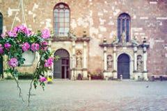 Ingång till den medeltida kyrkan Arkivbilder