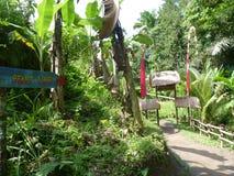 Ingångsporten till de härliga risfälten Fotografering för Bildbyråer