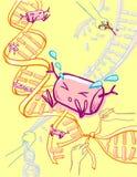 Ingénierie génétique de modification   Image libre de droits