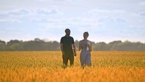 Ingénieur d'agriculture marchant avec l'étudiante dans le domaine de blé à l'été banque de vidéos