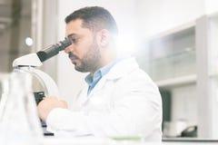 Ingénieur génétique du Moyen-Orient au travail photographie stock