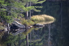 Inga Adirondack reflexioner 3 Arkivbild