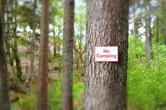 Inga campa tält undertecknar på träd i ledning för skogsbruk för skogsmarknationalparklopp utomhus Fotografering för Bildbyråer