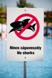 Inga hajar Arkivfoton