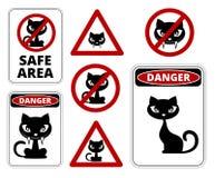 Inga katter Arkivbilder