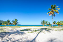 Ingang aan één van de mooiste tropische stranden in de Caraïben, Playa Rincon royalty-vrije stock afbeelding