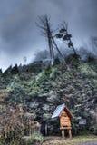 Ingang aan het Inheemse Bos van de Cipres in Taiwan Royalty-vrije Stock Fotografie