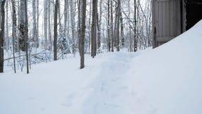 Ingang aan oude koude die kelder, met witte sneeuw in de de winterdag wordt behandeld klem Houten die deur, in bosbos wordt geves stock footage