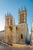 Ingang aan Saint Pierrekathedraal in Montpellier Royalty-vrije Stock Afbeeldingen