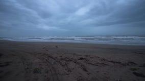 Ingang op de kust in de avond met mooie golven stock footage