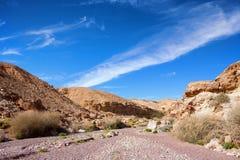 Ingang van de Rode Canion geologische aantrekkelijkheid stock foto's