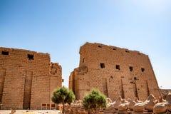 Ingang van Karnak-tempel in Egypte royalty-vrije stock foto's