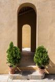Ingangsdeur met decoratieboom stock afbeeldingen