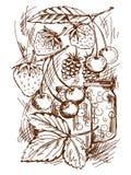 Ingeblikt fruit vector illustratie