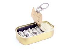 Ingeblikt geld Royalty-vrije Stock Afbeelding