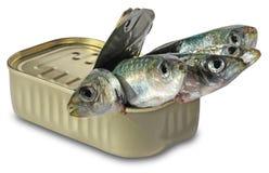 Vissen in blikken Stock Afbeeldingen