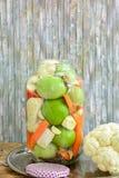 Ingeblikte gemengde groenten in het zuur Stock Afbeeldingen