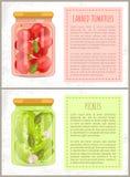 Ingeblikte Tomaten en Groenten in het zuur Vectorillustratie royalty-vrije illustratie